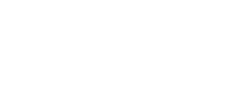 The Survey Group